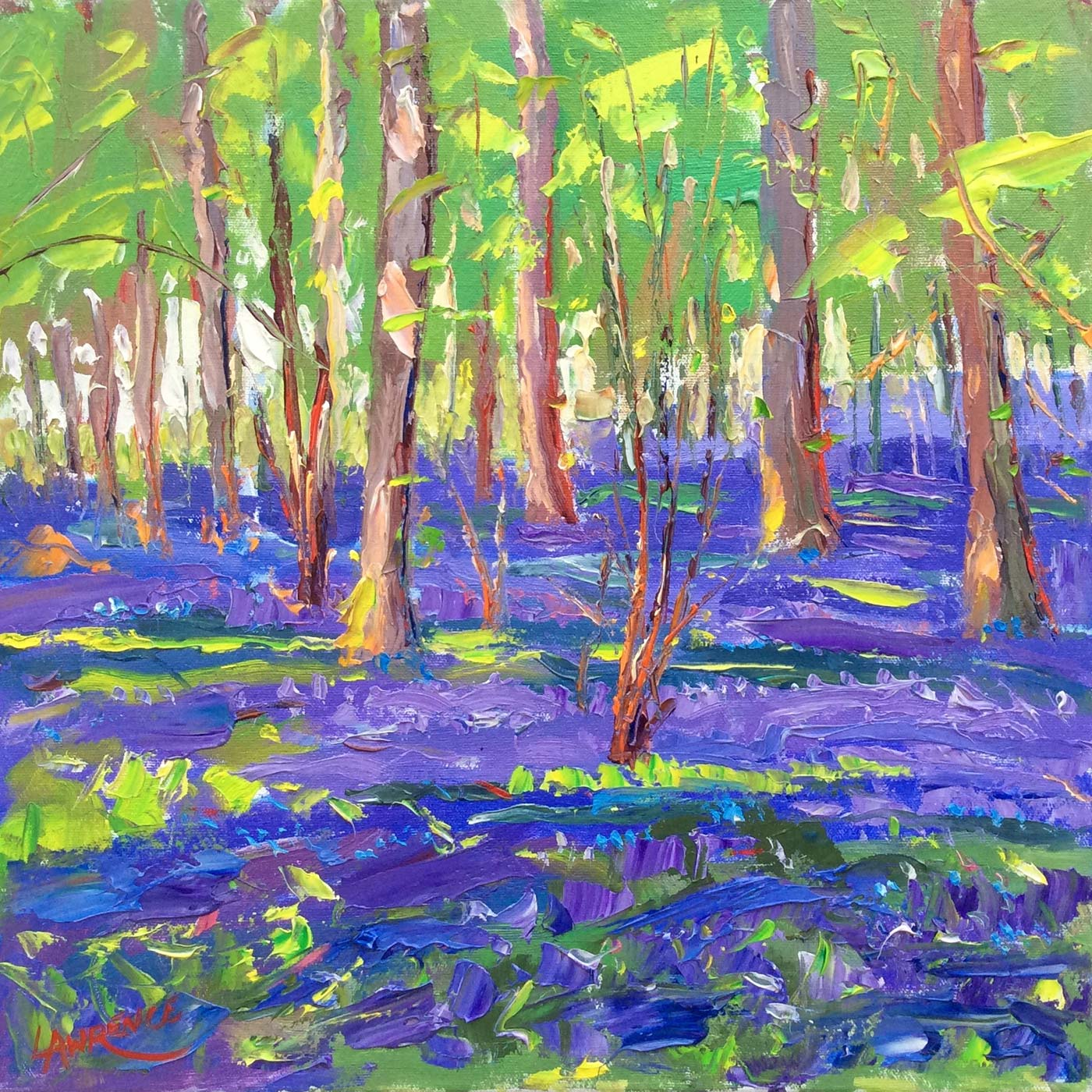 Bluebell Wood - Loxwood, Sussex