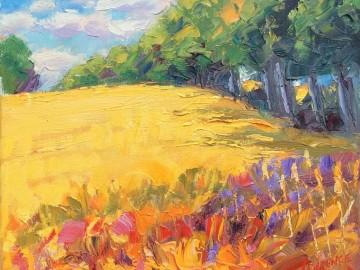 Harvested Field Near Mallow - Cork