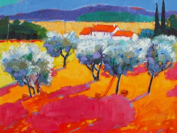 Olives, Provence